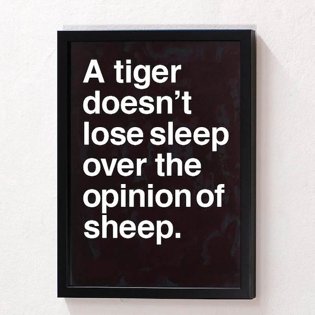 A Tiger Doesn't Lose Sleep Over Sheep